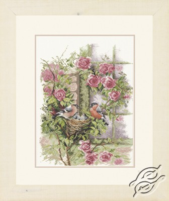Nesting birds in rambler rose by Lanarte - PN-0008020