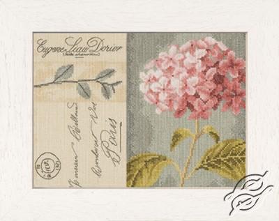 Hydrangea by Lanarte - PN-0008104