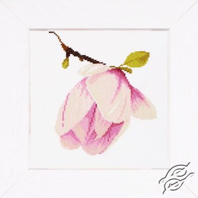 Magnolia Bud by Lanarte - PN-0008161