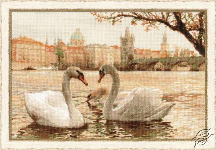 Swans - Prague by RIOLIS - 1364