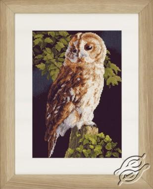 Owl by Lanarte - PN-0146814