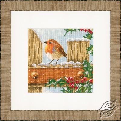 Curious Robin by Lanarte - PN-0021836