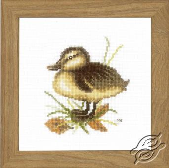 Duckling II by Lanarte - PN-0146978