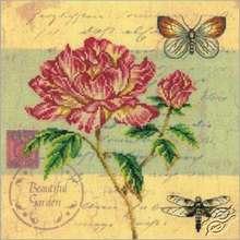 Postcard - Peony by RTO - M70014