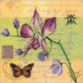 Postcard - Orchid by RTO - M70017