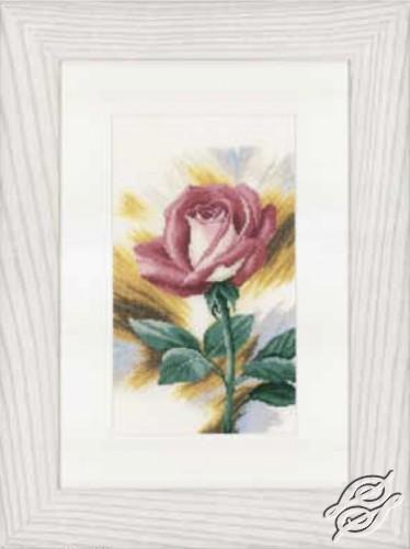 Shy Rose by Lanarte - PN-0148258