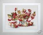 Guelder Rose by Luca-S - B2272
