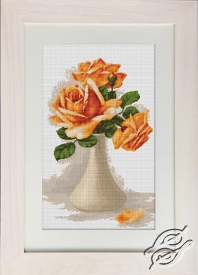 Orange Roses by Luca-S - G505