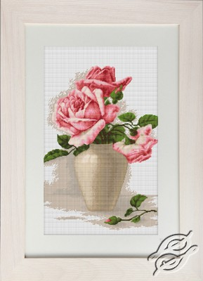 Pink Roses by Luca-S - B507