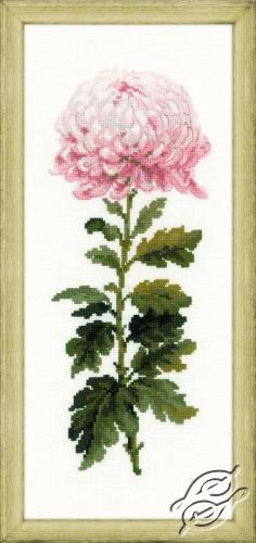 Gentle Flower by RIOLIS - 1425