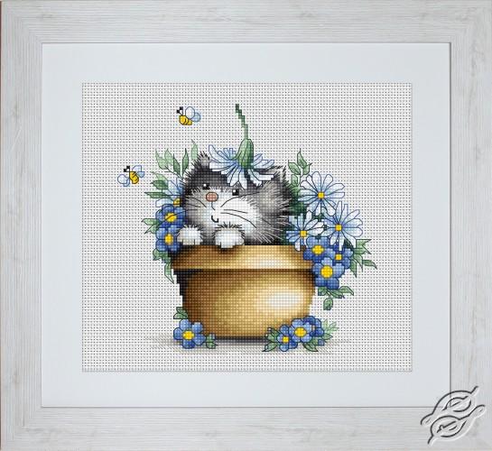 Kitten In Flowers by Luca-S - B1048