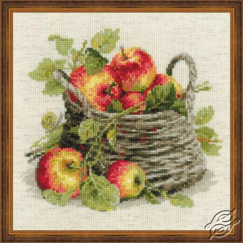 Ripe Apples by RIOLIS - 1450