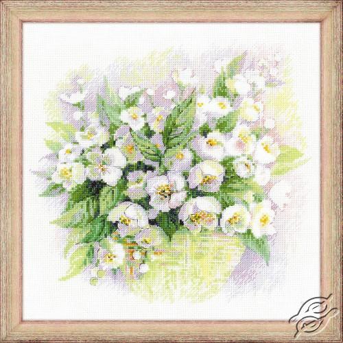 Watercolour Jasmine by RIOLIS - 1467