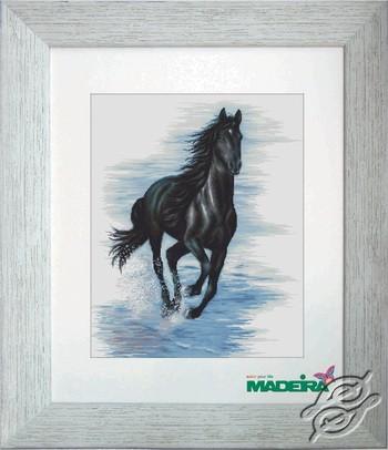 Horse by Luca-S - BM3007