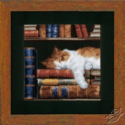 Cat Sleeping On Bookshelf by Vervaco - PN-0147121