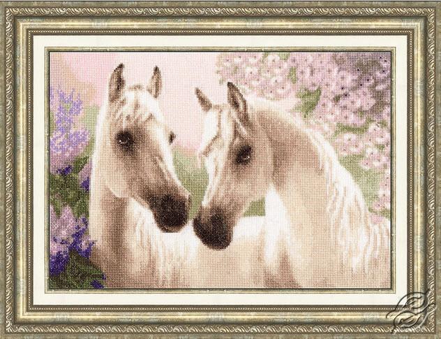 Arab Horses by Golden Fleece - Z-038