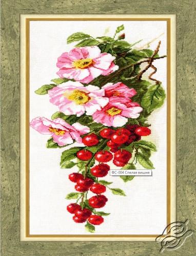 Ripe Cherry by Golden Fleece - FS-004