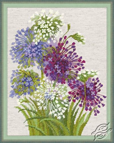 Allium by RIOLIS - 1484