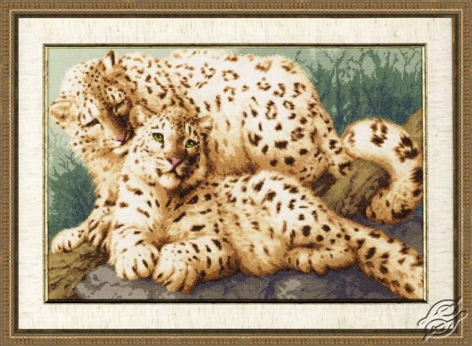 Snow Leopards by Golden Fleece - DZH-026