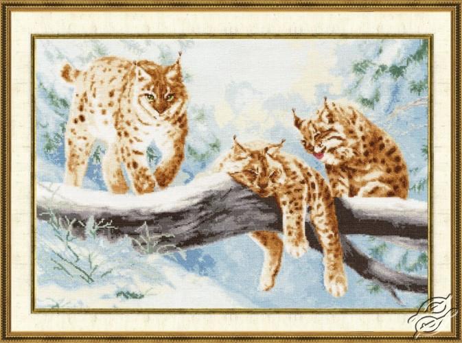 Lynxes by Golden Fleece - DZH-033