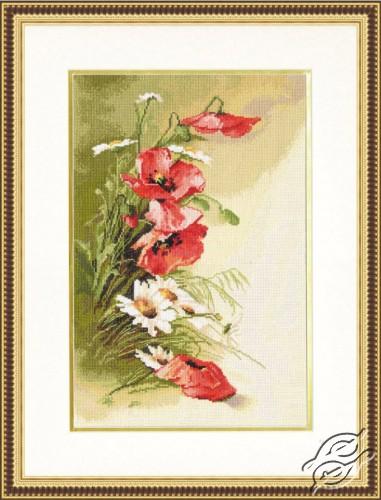 Field Poppies by Golden Fleece - BR-013