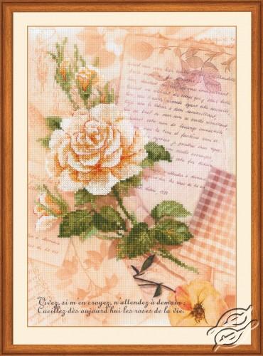 Love Letters. Rose by RIOLIS - 0035-PT