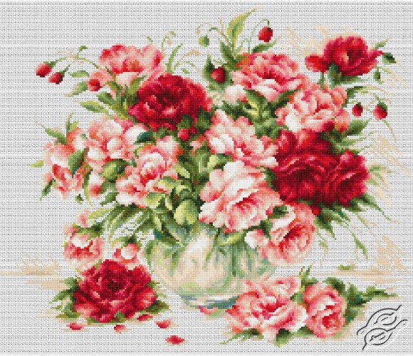 Peonies by Luca-S - BL22888