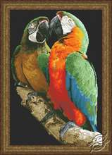 Macaws by Kustom Krafts - 20223