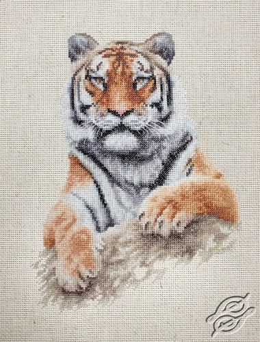 Tiger by Luca-S - B2289