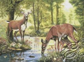 Woodland Stream - Deer by Kustom Krafts - 20593