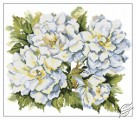 Garden Roses by RTO - M373