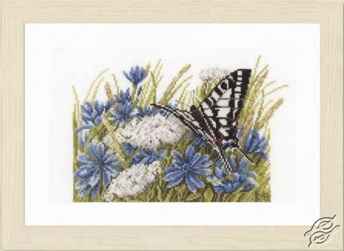Swallowtail and Cornflowers by Lanarte - PN-0156941