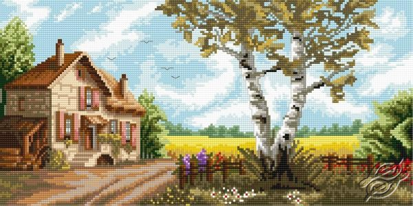 Birchtree View by Aslynn Foreignet - 000633