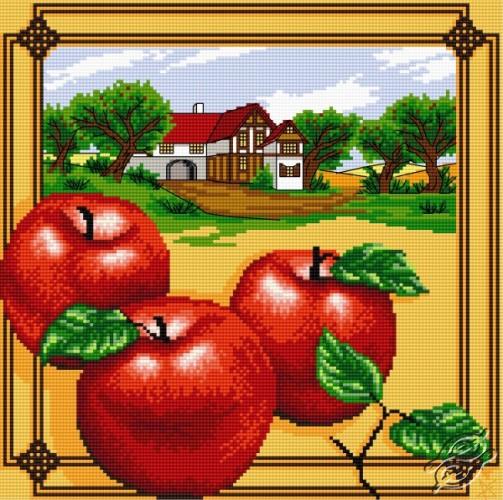 Apples by Aslynn Foreignet - 000930