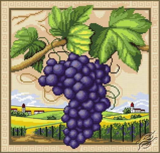 Grapes by Aslynn Foreignet - 000877