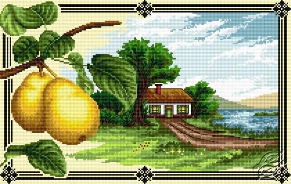 Pears by Aslynn Foreignet - 000946