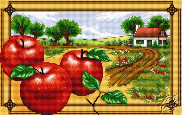 Red Apples by Aslynn Foreignet - 000959