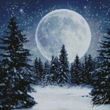Winter Moon by Kustom Krafts - 98753