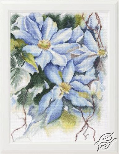 Blue Clematis Stars by RTO - M546