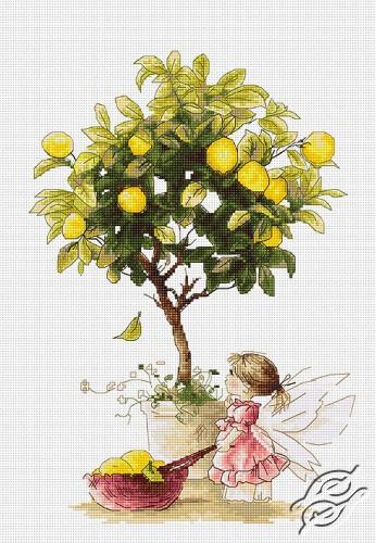 Lemons by Luca-S - B1111