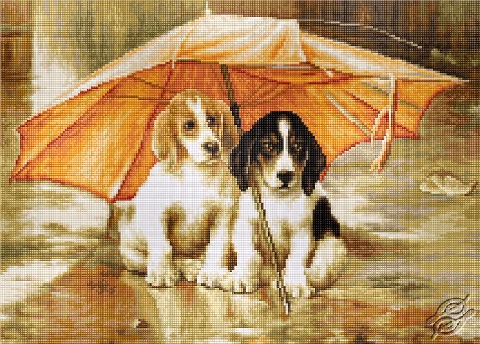 Couple Under an Umbrella by Luca-S - G550