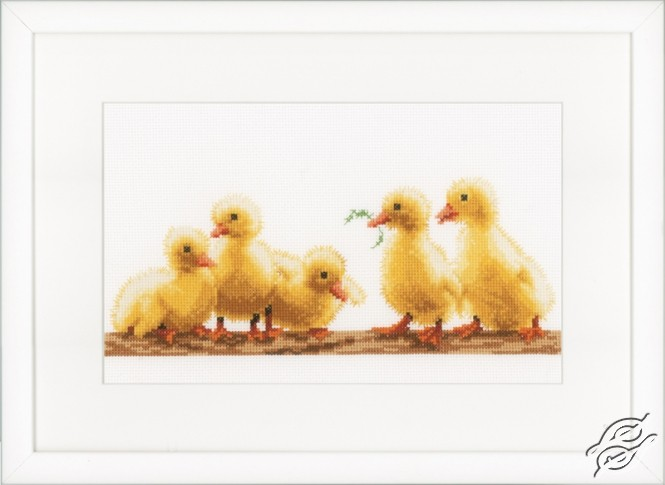 Young Ducklings by Vervaco - PN-0153751