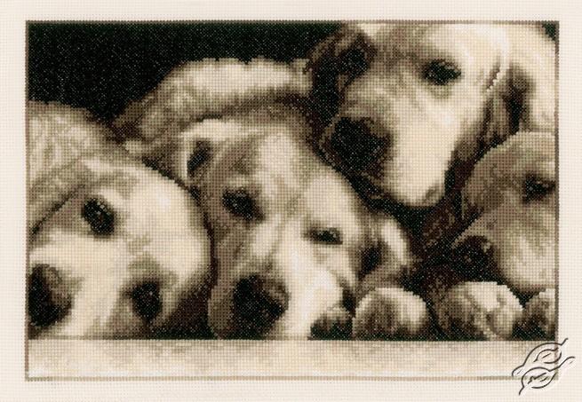 Labradors by Vervaco - PN-0154541