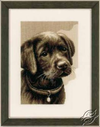 Labrador Puppy by Vervaco - PN-0158080