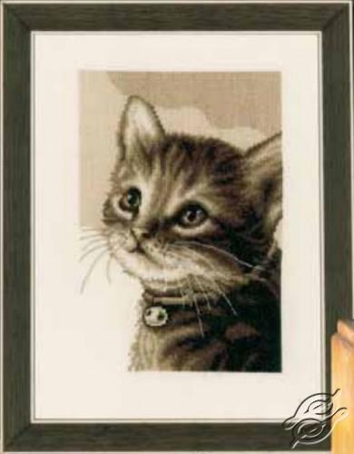 Kitten by Vervaco - PN-0158081