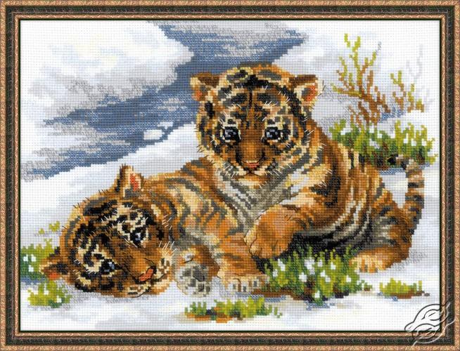 Tiger Cubs in Snow by RIOLIS - 1564