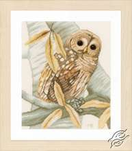Owl and Autumn Leaves by Lanarte - PN-0158326