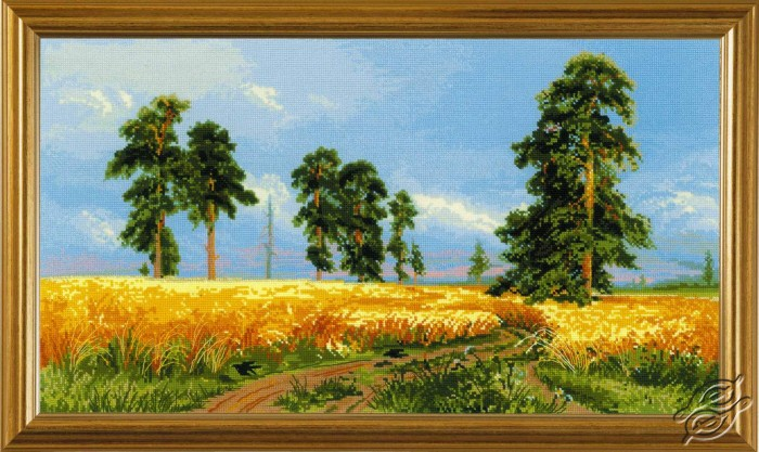 A Rye Field by RIOLIS - 1598