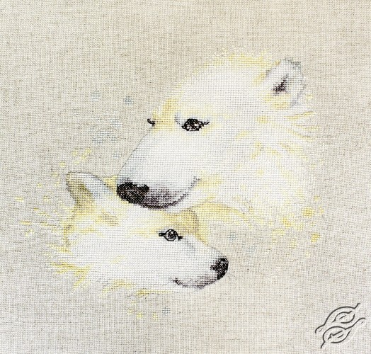 The Bears by Luca-S - B2307