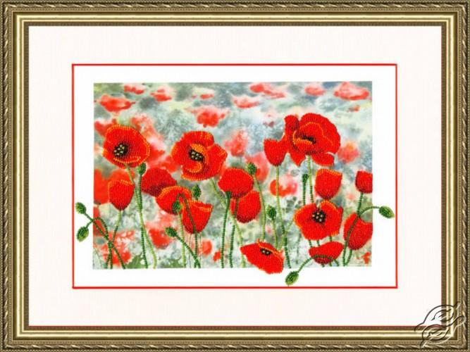 Poppy Meadow by Golden Fleece - RT-076